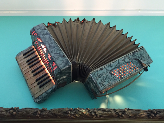 accordeon-close-up